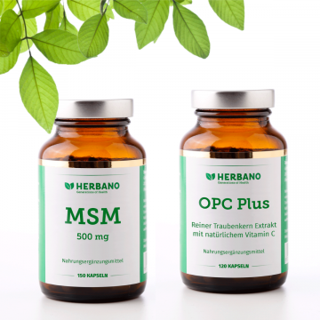 Stoffwechsel-Booster-Paket mit MSM und OPC