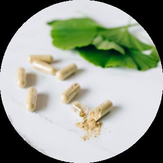 Ginkgo biloba Kapseln Inhaltsstoffe