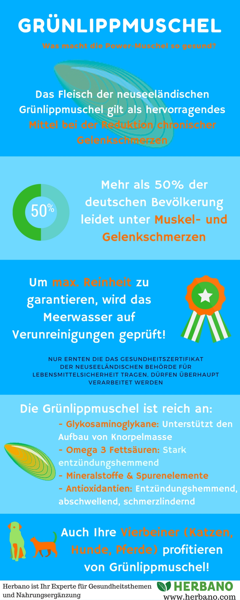 gruenlippmuschel