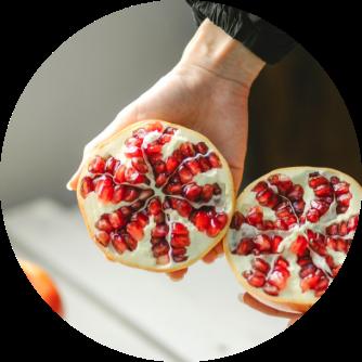 Granatapfelextrakt Antioxidantien