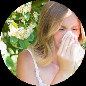 MSM Kapseln Allergie