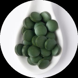 Spirulina Tabletten kaufen